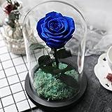 Diy decoraciones,Eterna caja de regalo de la flor Rosas en la máscara de cristal Flores Rosa fresca Decoración-Azul 15x22.5cm(6x9inch)