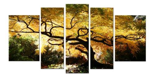 Startonight Glass Wall Art Acrylic Decor Canadian Maple, and a ...