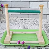 Hypeety piccolo uccello Parrot stand persico–Supporto da tavolo parco giochi Grind Perch Swing training Playstand esercizio masticare giocattoli per pappagalli parrocchetto Cockatiel Conure Finch