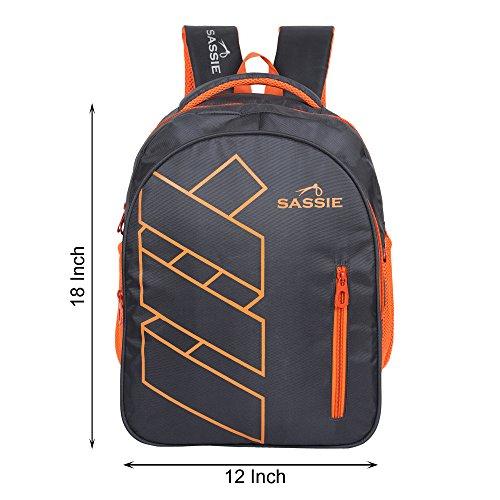 Sassie Grey Polyester 41 Ltr School Backpack Image 7