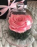 Rosa eterna en urna de cristal + tarjeta con mensaje + caja de regalo (Rosa) Rosa preservada