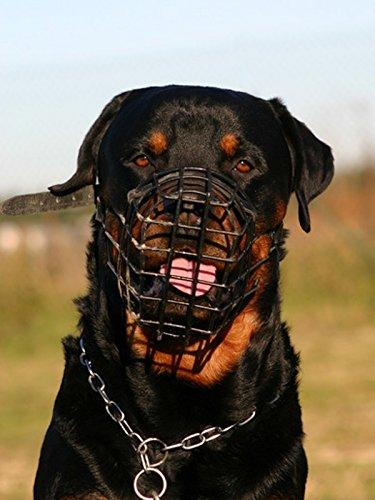 NUEVO metal alambre Cesta Bozal para perro Rottweiler, Mastiff Golden Retriever, etc.