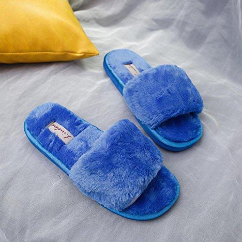 DM&Y 2017 Word interno peluche casa coppia pantofole pantofole di peluche Blue