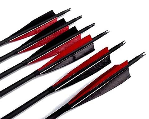 Flèche en Carbone Mixte Bangta, 31 pouces, 5 pouces Plume noire& rouge, Pointe de Flèche remplaçable avec une vis, Flèche pour l'extérieur et pour la chasse, Tir à l'Arc, Sports et loisirs (12 pièce)