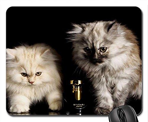bulgari-baby-kittens-mouse-pad-mousepad-cats-mouse-pad