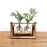 SODIAL Kreative Blumenzwiebel Vase Pflanze Glas Wasserkultur Behaelter Bauernhof Dekoration Holz Blumentopf Zuhause Dekorationen