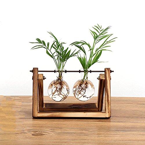 SODIAL Kreative Blumenzwiebel Vase Pflanze Glas Wasserkultur Behaelter Bauernhof Dekoration Holz Blumentopf Zuhause Dekorationen (Für Blumenzwiebeln Glas-vase)