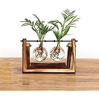 SODIAL Contenedor hidroponico de vidrio de planta florero bulbo creativo decoracion de granja maceta de madera decoraciones de casa