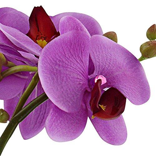 LED Orchidee Blumentopf Pflanze Beleuchtung Blume Blüten Blätter Globo 28003 - 5