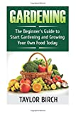 Gardening: The Beginner's Guide to Start Gardening and Growing Your Own Food Today: Volume 1