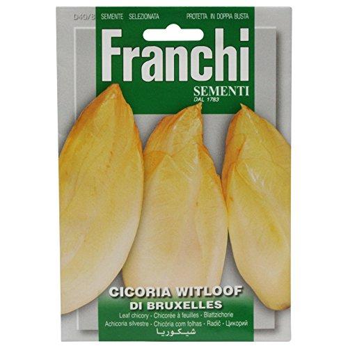 Seeds of Italy Franchi Chicorée de Bruxelles