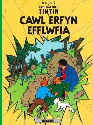 Cyfres Anturiaethau Tintin: Cawl Erfyn Efflwfia by Herg?? (2011-11-07)