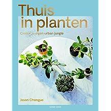 Thuis in planten: creeer je eigen urban jungle