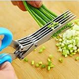 Edealing 1 PCS Nuevo acero inoxidable Escalona cebolla de primavera de verduras Shredder Slicer Cortador 5 cuchillas afiladas