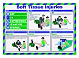 St John Ambulance A2 Poster Soft Tissue Injuries