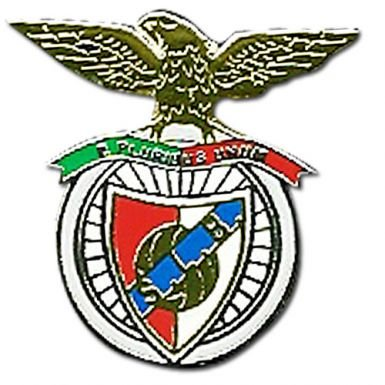 Benfica Crest Pin Badge (Sporting Fc Portugal)