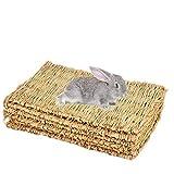 ShangSky Animal Chew Toy Letto per Conigli, Tappetini in Erba Tessuta a Mano Naturale per Coniglietto, Cavia, Criceti