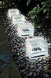 4er Set XXL Wegeleuchte LED Solarleuchte Eisblock LED Solarlampe Eiswürfel Solar LED Glas - Solarlampen mit LED Beleuchtung Echtglas mit integriertem Dämmerungssensor- einmaliger Blickfang als Wegeleuchte oder Pfadbeleuchtung als auch als Beleuchtung für das Blumenbeet (4er Set 10x10x5 cm kaltweiß)