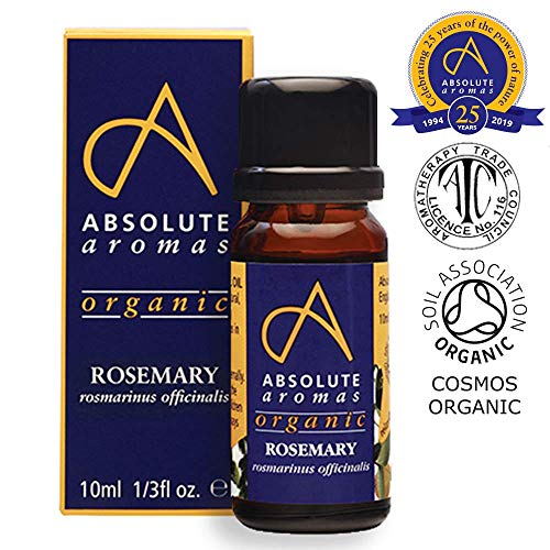 Arômes absolues organiques Rosemary Oil, 10 ml