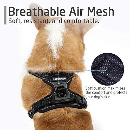 Rabbitgoo No-Pull-Hundegeschirr einstellbar weich Hundegeschirr Haustier einfach sicher Kontrolle Körper bequem Hunde Leine für kleine Hunde schwarz 3 Größe - 4