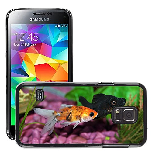 Just Phone Cover Bild Hart Handy Schwarz Schutz Case Cover Schale Etui // M00138129 Goldfish Fisch Aquarium Unterwasser // Samsung Galaxy S5 MINI SM-G800 (Goldfish Cover)