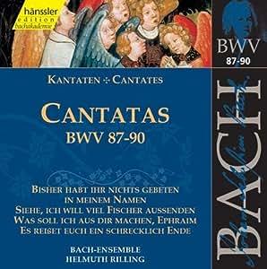 Edition Bachakademie Vol. 28 (Kantaten BWV 87-90)