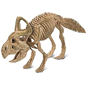 Geoworld -Jurassic Eggs - Kit para ensamblar - Esqueleto de Protoceratops - Modelo n. CL437K