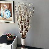 Rami decorativi secchi includi non - Decorazioni rami secchi ...