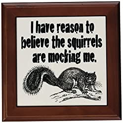 3dRose ft_171998_1 I Have Reason to Believe The Squirrels are Mocking Me. Squirrel Whisperer-Framed Tile Artwork, 8 by 8-Inch