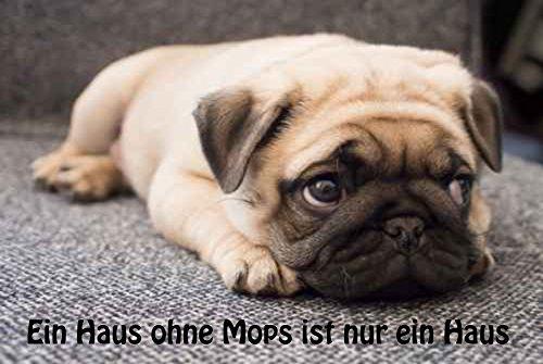 """"""" Ein Haus ohne Mops ist nur ein Haus """" Hundemotiv - Fussmatte bedruckt Türmatte Innenmatte Schmutzmatte lustige Motivfussmatte"""