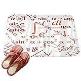 LvRaoo Fußabtreter Rutschfest Fußmatte für Außen und Innen Fußabstreifer Home Décor - Mathematische Formel Gemustert (# 4, 60*40cm)