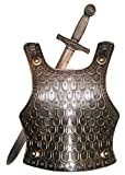 Medieval GOLD SWORD and CHEST ARMOUR SET METAL LOOK