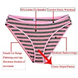 Nightaste Women Cotton French Cut Briefs Panties with Color Stripes(Pack of 5)