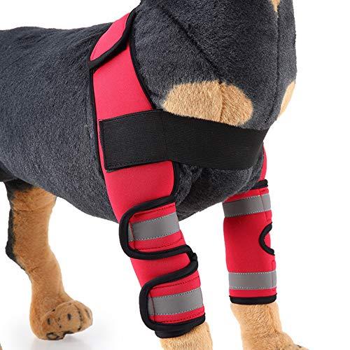 BVAGSS Einstellbar Bandage Knieschützer Atem Kniebandage Hund Leggings Joint Wrap Unterstützung für Das Hinterbein/Vorderbein Ihres Hundes XH005 (L, Red)