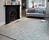 tappeti moderni Designer TRENTO argento coperta 100% lana della Nuova Zelanda 120 x 180 cm