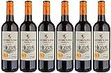 Les Deux Pins Merlot Vin Rouge de Pays D'Oc 0,75 L - Lot de 6