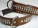 LEDER HALSBAND - Hundehalsband, NIETEN BRAUN, Halsumfang 40-46cm, NEU (PL.04-05-6-14)