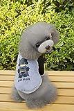 QINCH Home Artículos para Mascotas Ropa para Perros Ropa para Perros otoño e Invierno versión Q suéter (Color : Grey, Size : M)