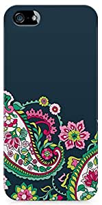 Apple iPhone 5s Back Cover by Vcrome