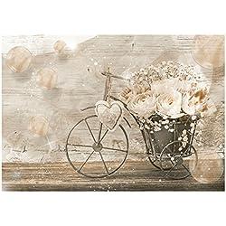 WTD–Papel pintado vintage bicicleta y flores pared Mural (3667ve), 312cm x 219cm (WxH)