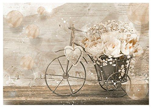 WTD–Papel pintado vintage bicicleta y flores pared Mural (3667ve