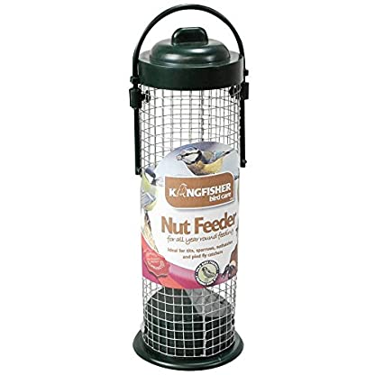 Kingfisher BF027 Green Standard Bird Nut Feeder, Transparent, 7.6x8.5x28 cm 1