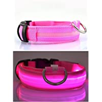 NEO+ Collare LED per Cane USB Ricaricabile, Lampeggiante, visibilità (Grande Rosa)