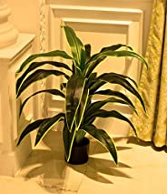 YATAI Artificial Dracaena Fragrans Plant with Plastic Pot for Home Garden Decoration – Fake Tree – Fake Plants