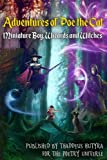 Adventures of Poe the Cat: Volume 2 (Miniature Boy, Wizards and Witches)