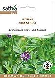Gründüngung Luzerne | Bio-Gründüngung [MHD 12/2018]