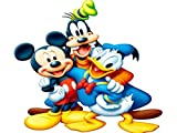 Best Duck Posters - mickey mouse donald duck Wall Poster Print on Review
