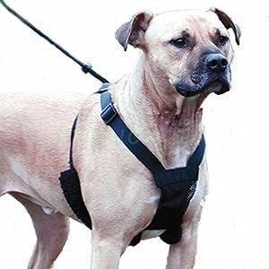 Unho® Harnais Chien Laisse Ceinture de Sécurité pour Chien Collier Respirant Harnais de Dressage Anti-traction pour Grand Moyen Petit chien 4 Tailles Disponibles