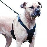 Unho Arnés Perro Collar Corrrea ( no se puede tirar del arnés), Cómodo Ajustable Tela de Mallas para perros grandes medianos pequeños, 4 tallas disponibles
