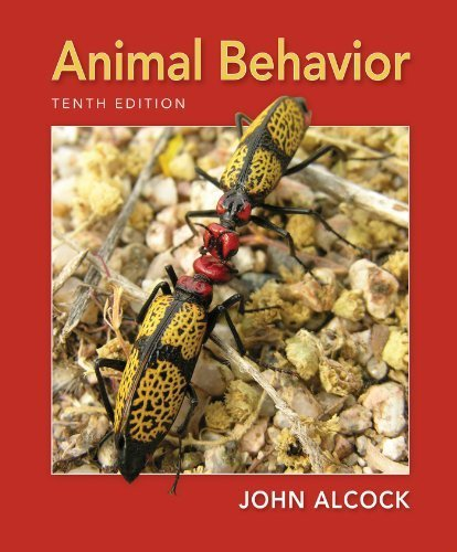Animal Behavior: An Evolutionary Approach, Tenth Edition by John Alcock (2013) Paperback